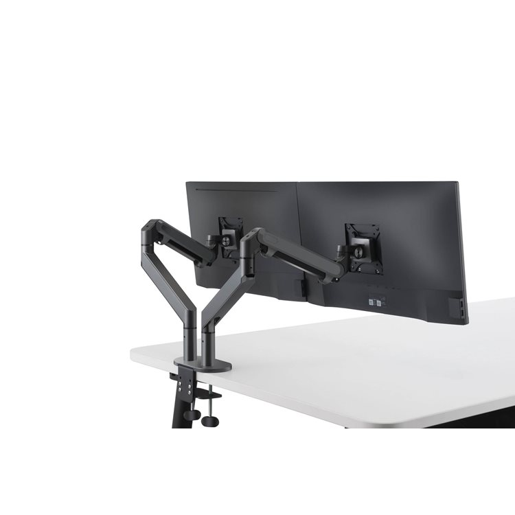 Double arm support for screen Jamy